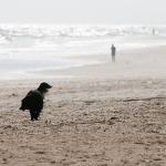 Пляж Манта Рота
