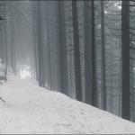Туманная дорога к Zill am Ziller
