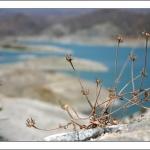 Кипр, дамба