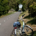 Велопробег вдоль побережья