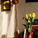 Домашние фотозарисовки