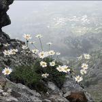 Вид с тропы на вершину Dikeos