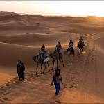 Марокко. Рыжий