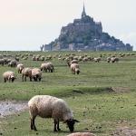 Mont Saint-Michel. Вечер