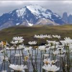 Torres del Paine - 2