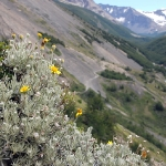 Национальный парк Torres del Paine